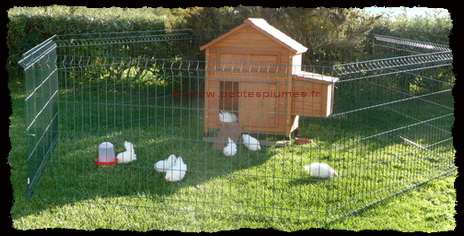 Le poulailler la maison des poules - Maison pour les poules ...