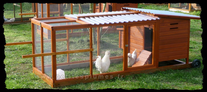 poulailler mobile 4 poules